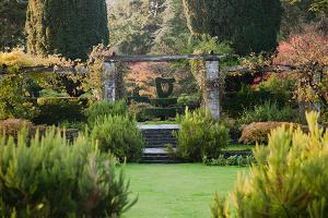 The Shamrock Garden at Mount Stewart, Northern Ireland