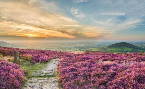 web_North-York-Moors---Yorkshore---Visit-England---Thomas-Heaton