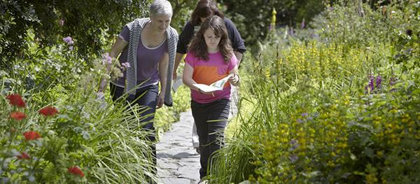 1431746813986-hill-top-garden