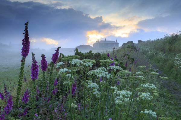 Pentire Farm at Trevose Head, Cornwall - National Trust/ John Miller