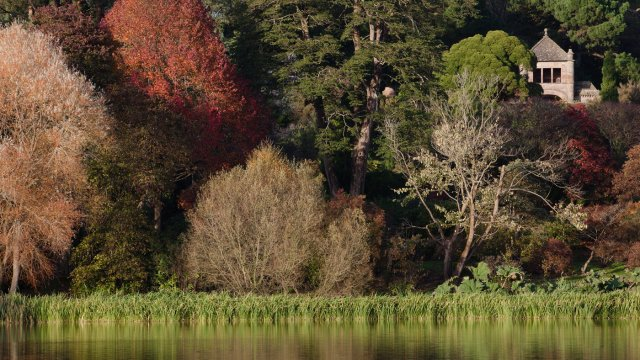 Feel inspired by the colours of autumnNational Trust Images/Megan Taylor