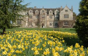 Wakehurst Palace
