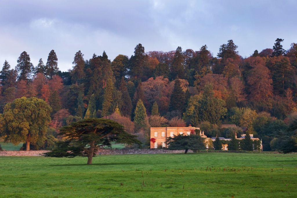 Killerton view across the park ©National Trust Images Clive Nichols