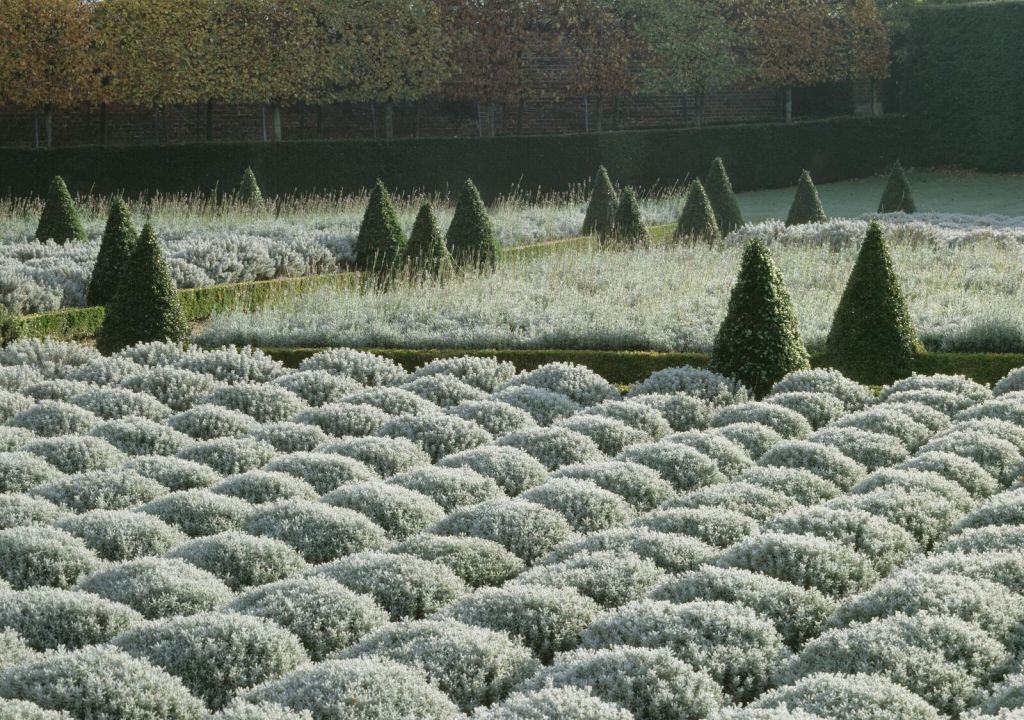 The Cherry Garden in winter at Ham House. National Trust Images
