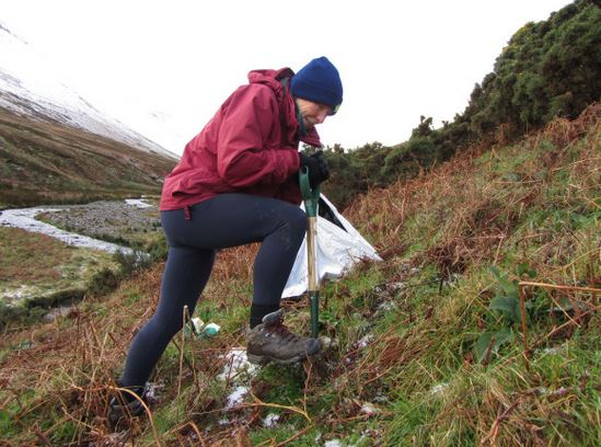 Planting trees in Coledale, near Keswick. Credit: National Trust