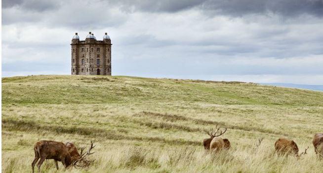 National Trust Images / Arnhel de Serra