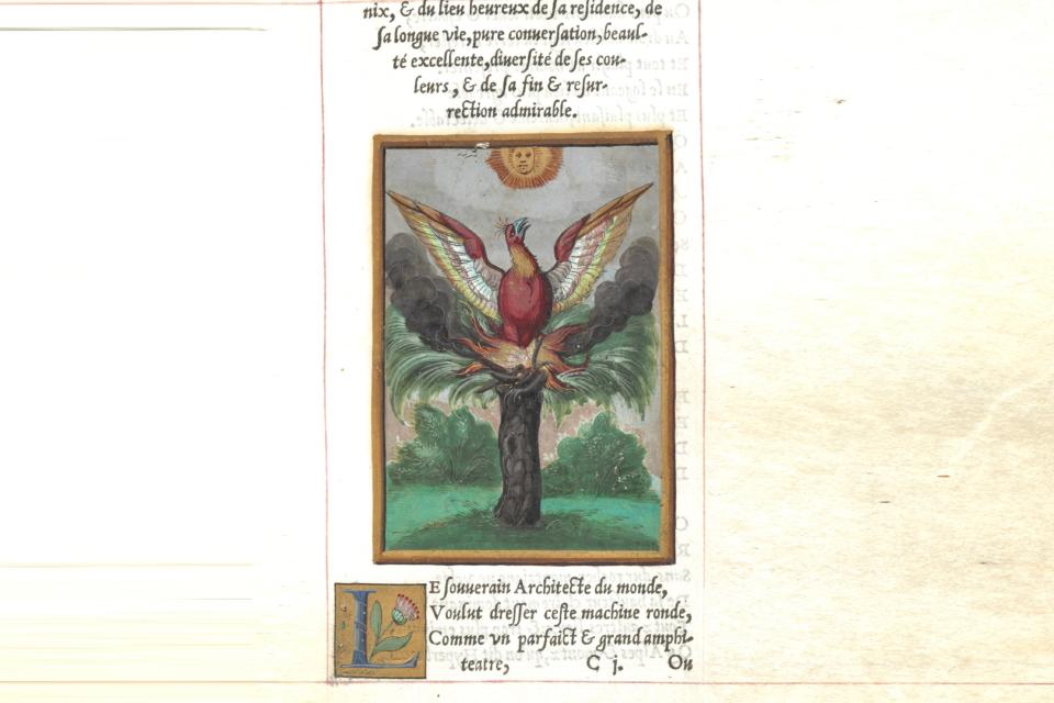 Guy de la Garde L'Histoire et description du Phoenix British Library