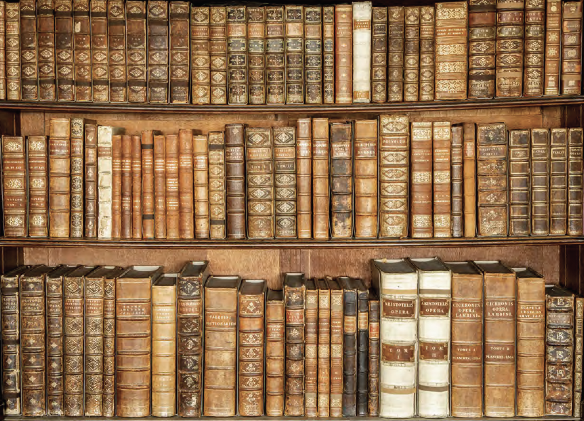 Different styles of binding on the surrounding shelves ©National Trust Images/Paul Bailey