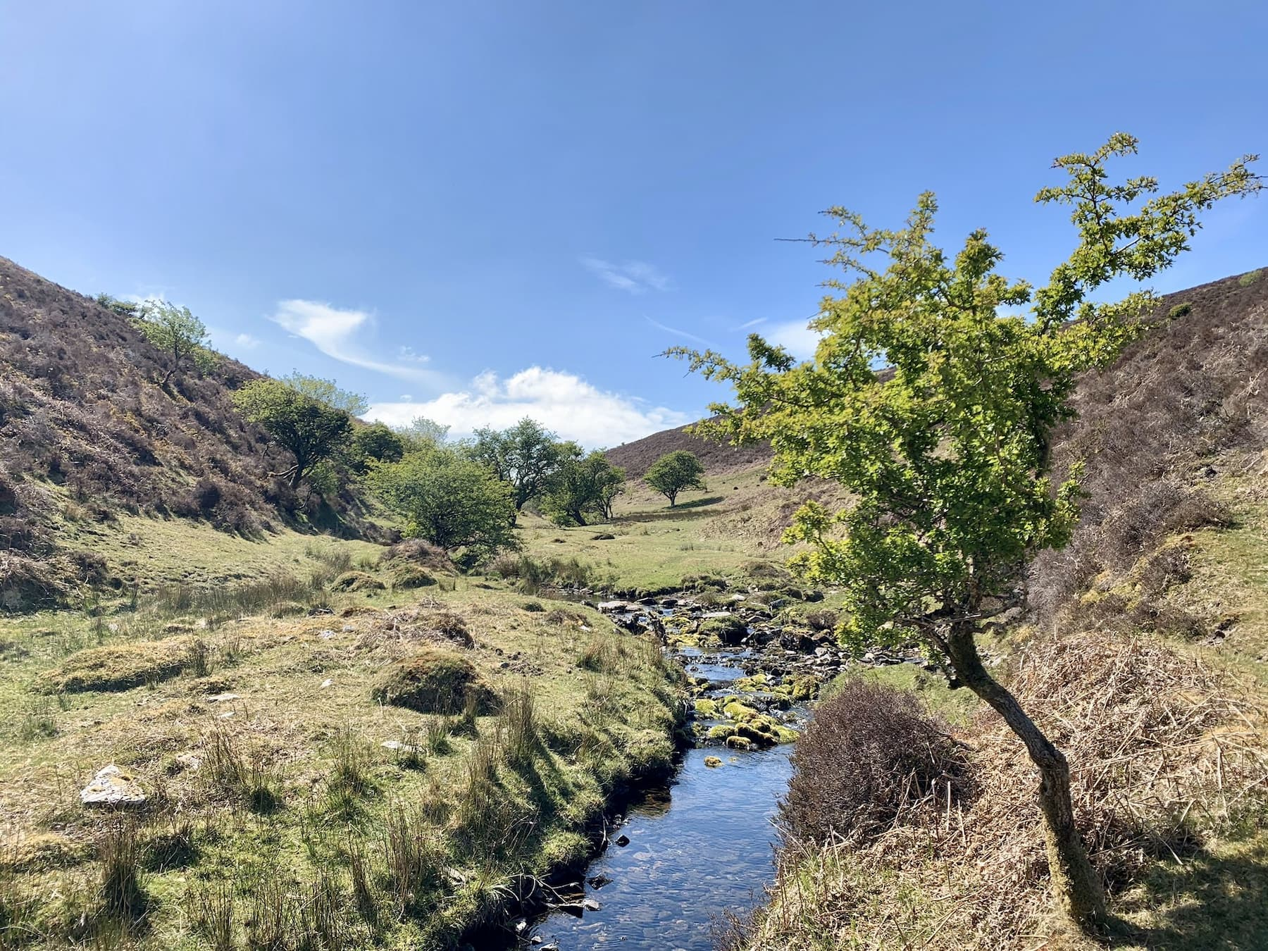 Higher up the Combe (Lankcombe water). Accessible via the Lorna Doone valley & Cloud Farm campsite. ©Sarah Hailstone