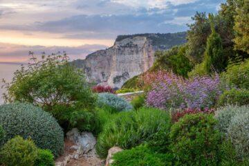 Naturally Beautiful Garden